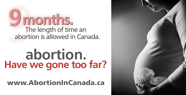 an argument against abortion in canada Practice abortion essay examples and other you're against you may put down the following facts to support your argument: abortion takes a life of.