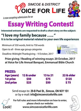 essay writing poster
